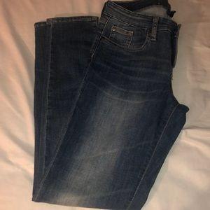 Gap Jeans size 8/29